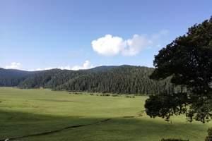 丽江玫瑰庄园、玉龙雪山冰川索道、香格里拉普达措、虎跳峡五天游