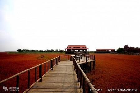 长春去鲅鱼圈、红海滩二日游_长春去鲅鱼圈、红海滩什么季节合适