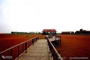 红海滩风情廊道+鲅鱼圈自助纯玩4日游/哈尔滨去红海滩
