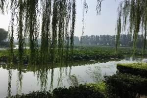 公司团队北京周边旅游方案_白洋淀泛舟 捡野鸭蛋 赛龙舟二日游