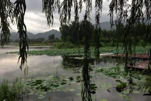 红螺湖鸟岛