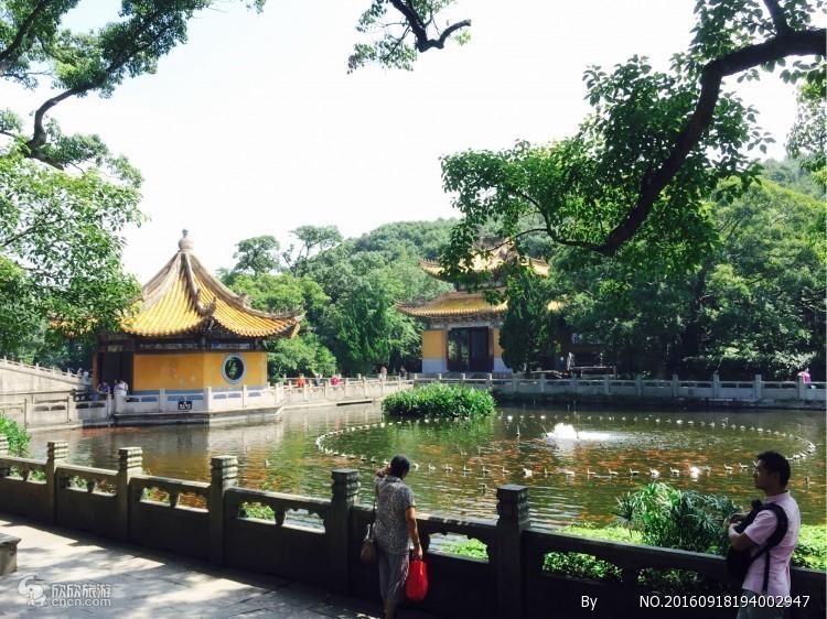 上海到普陀山二到五日大巴车票 往返车费  上海到普陀山怎么走