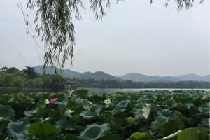 上海出发杭州苏州千岛湖乌镇四人游