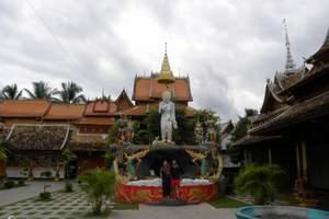 中缅第一寨+独树成林+哈呢文化园+野象谷+森林公园二日游