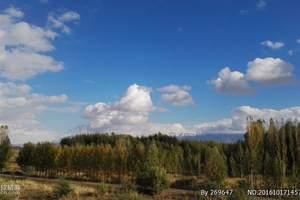 【南北疆丶大环游】胡杨林、吐鲁番、葡萄沟、火焰山双飞十三天