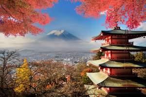 南宁到日本旅游景点有哪些_日本北陆米其林、白川乡合掌村8日游