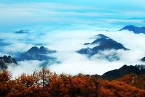 南宁去西安旅游团_南宁到西安延安、黄陵、兵马俑、华山双飞7日