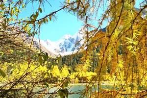 四川10月11月红叶彩林推荐线路 成都米亚罗毕棚沟奶子沟3天