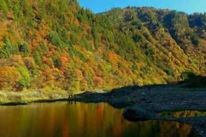 11月成都去米亚罗 孟屯河谷 雅克夏雪山 奶子沟彩林环线3天