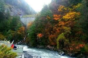 成都去阿坝理县米亚罗 黑水奶子沟红叶彩林环线全景2日游 东藏