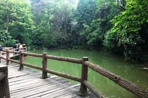 广州黄山鲁森林公园一天游【单团单议】