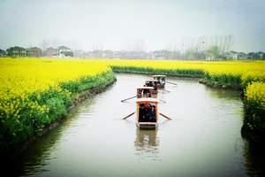 春季周边游:青岛到泰州大纵湖、兴化油菜花大巴二日游 周六发团