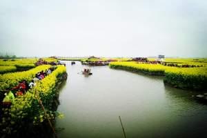 油菜花跟团旅游:扬州何园、泰州老街、千垛油菜花大巴跟团二日游