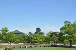 这个季节去哪儿?韩国济州4飞5日游|韩国优质旅游线路推荐