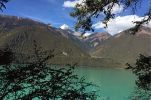 西藏旅游:林芝、大峡谷车游、鲁朗林海、卡定沟三日游
