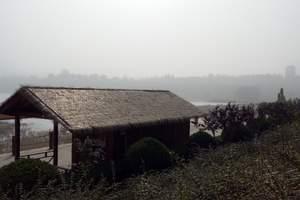 太原到河南地坑院旅游|陕州地坑院、函谷关天鹅湖二日游