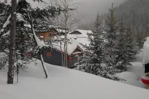 石家庄到哈尔滨、亚布力滑雪、雪乡民俗农家乐双飞6日游