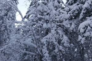 哈尔滨出发到五常凤凰山旅游 五常冬季凤凰山高山雪原二日游特价