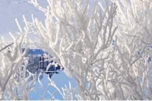 成都去鹧鸪山赏雪滑雪场纯玩一日游 鹧鸪山滑雪场在哪里 心途新