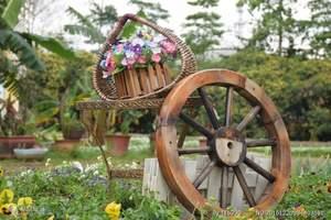 广州旅游 佛山至广州旅游 佛山周边游 宝趣玫瑰园一天游