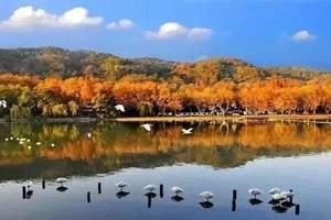 【五星水疗之旅】大通古镇+永泉旅游区+图影湿地休闲精品三日游