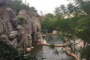 南昆山温泉大观园+石塔山公园纯玩一日游