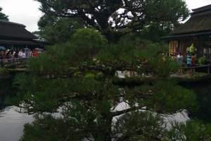 【质正纯品】EY日本关西一地半自由行6日游 北京到日本跟团游