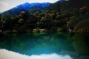 广州花都王子山森林公园一天游【单团单议】
