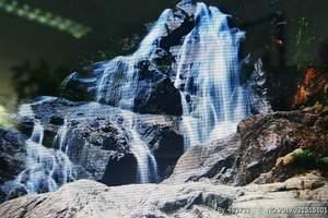 清远赏禾雀花、天子山观瀑布一天游【单团单议】