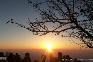 青岛到泰山、泰安大裂谷跟团二日游 青岛到泰山跟团多少钱