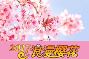 成都到看日本樱花时间,日本樱花溫泉美食6日,日本赏樱旅游团