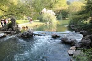 杭州西湖一日游 观西湖美景 坐西湖游船 拜灵隐寺