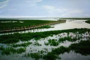 金海湾红树林