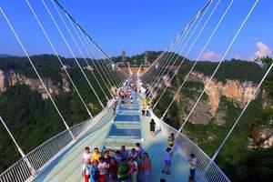 张家界玻璃桥、天门山、凤凰古城5日游(酒店升级,深度纯玩)