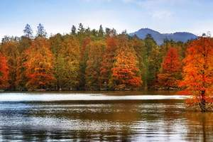3月聚划算:临安青山湖·水上森林公园 养生湖鲜宴一日游