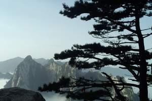 【西安四日游攻略】兵马俑、华清宫、西岳华山、壶口瀑布、纯玩团