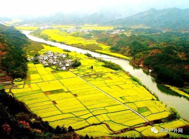 春季赏油菜花宝地---新安江-昌溪古镇-石潭二日徒步深度旅行