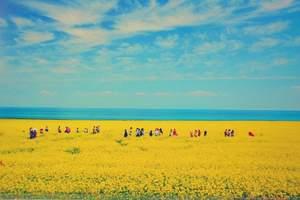甘肃、青海大环线、塔尔寺、青海湖、敦煌、七彩丹霞等8日游