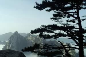 西安跟团一日游线路选择,西安周边各景点一日游线路