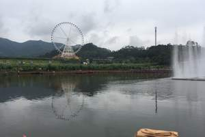 公司定制旅游方案 远观冲天摩天轮、普宁盘龙湾温泉两日游