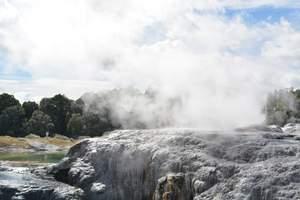 新西兰南北岛库克山、观鲸、萤火虫洞11日