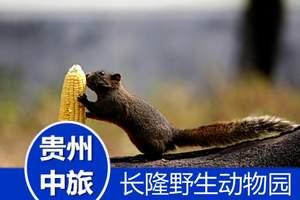 广州长隆野生动物园、水上乐园动车二日游/广州长隆酒店企鹅酒店