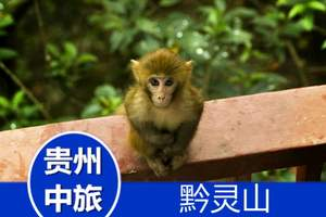 贵州旅游/攻略/黔灵山公园、甲秀楼市内休闲一日游/贵州周边游