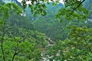 贵阳、黄果树、遵义、茅台、西江、镇远古镇、梵净山2飞6日游