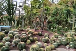 龙沙动植物园+温泉欢乐谷豪华亲子两日游
