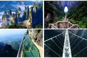 <双玻传奇>洛阳去张家界玻璃桥、天门山玻璃栈道、凤凰双卧六日