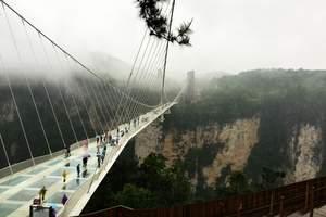 张家界大峡谷玻璃桥景区纯玩一日游(含用车、门票、导游、中餐)
