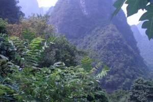 湘潭出发到恩施大峡谷、云龙河地缝、黄鹤桥峰林、汽车两日游