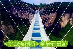 <挑战玻璃桥>张家界大峡谷玻璃桥、芙蓉镇、凤凰古城全陪五日游