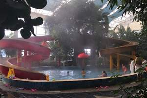 青岛小汤热爱雨林温泉+有机草莓采摘+烟天鹅湖+海洋科技宫二日
